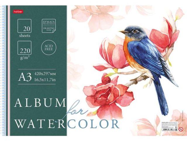 Альбом для акварели Hatber Рисуем акварелью A3 20 листов 20Аа3тВпс_20806