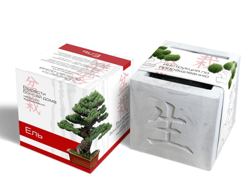 Растение ЭкоДом Вырасти Бонсай дома Ель В дизайнерском кубике ручной работы