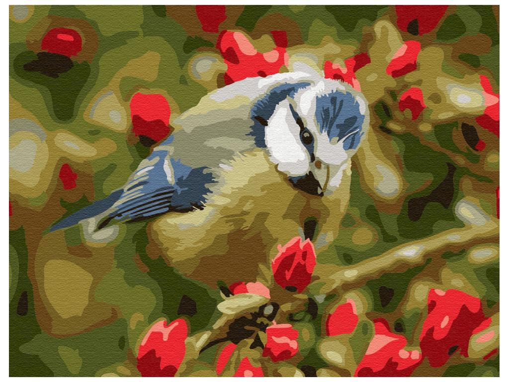 Картина по номерам Molly Синичка 15x20cm KH0767