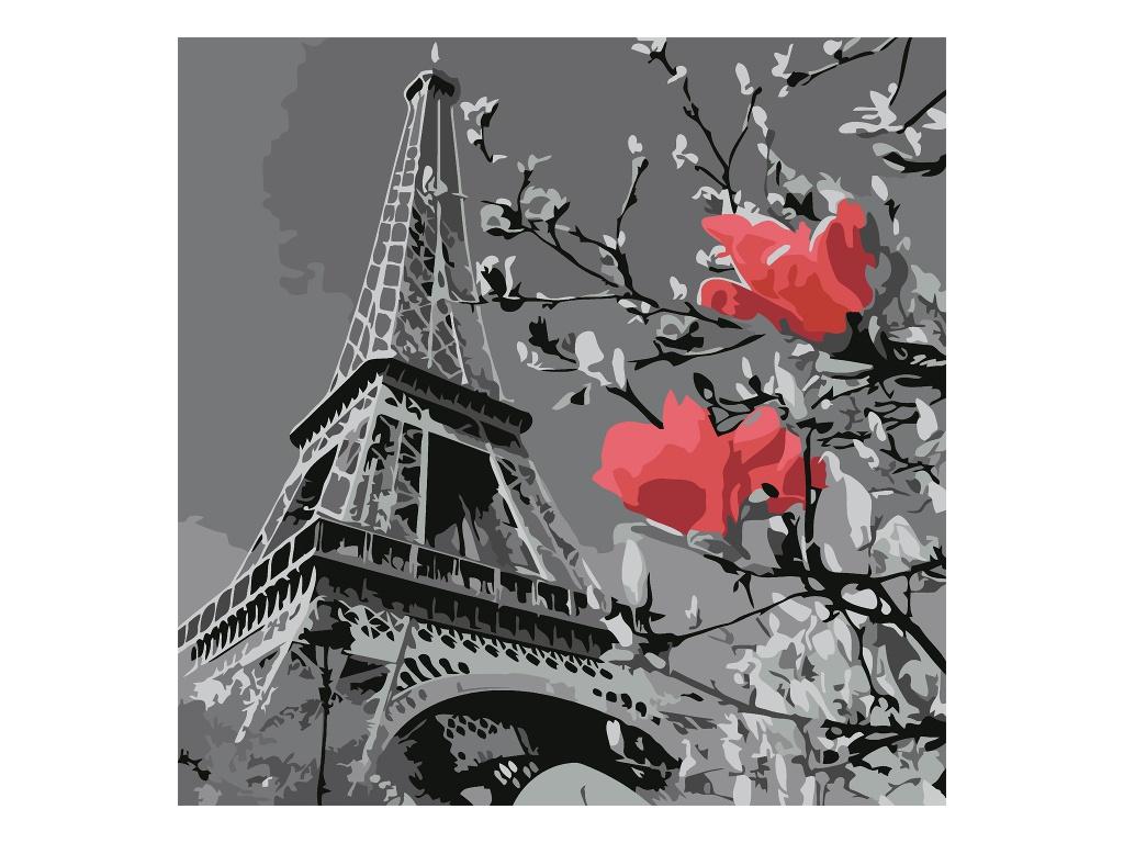 Картина по номерам Котеин Париж в цвету 30x30cm KHM0038