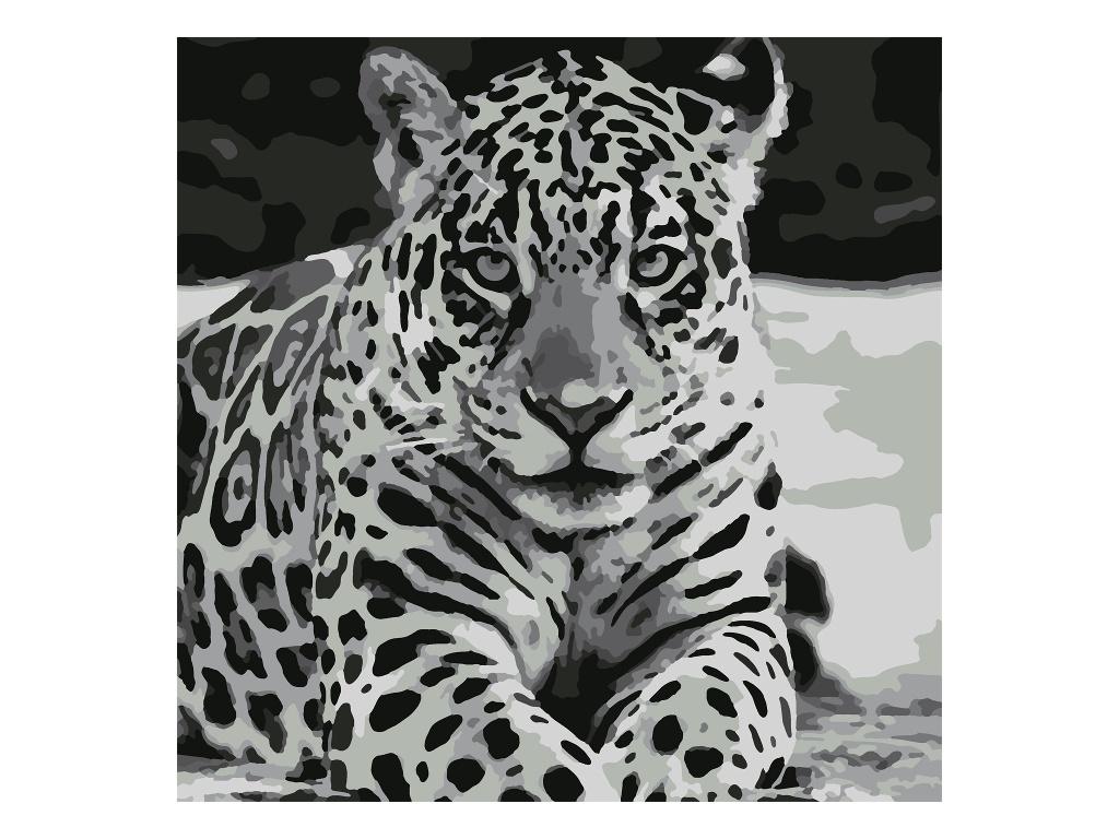 Картина по номерам Котеин Ягуар 30x30cm KHM0039