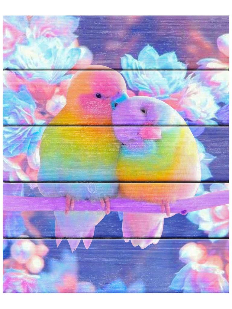Картина по номерам Flamingo Влюбленные попугаи 40x50cm FLA024