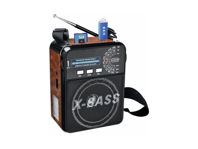 Радиоприемник Fepe FP-1322U Wood
