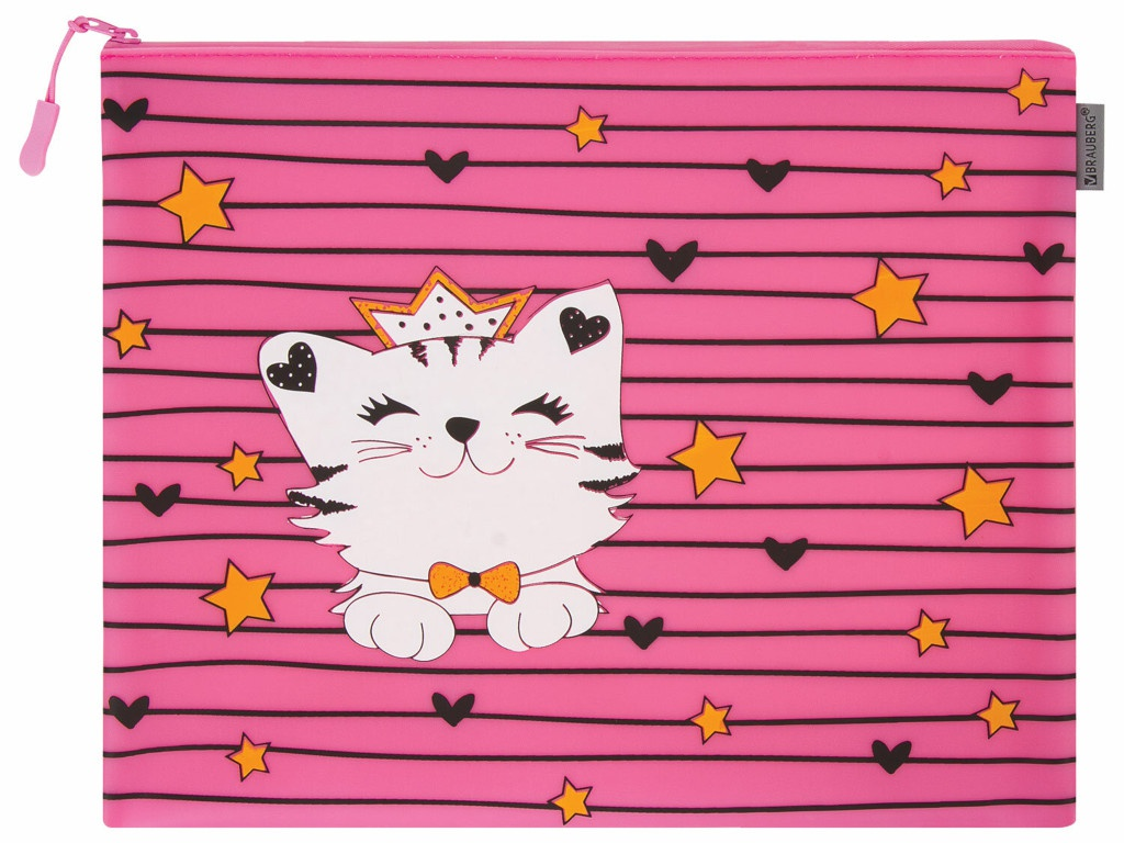 Папка Brauberg Cat A4 229262