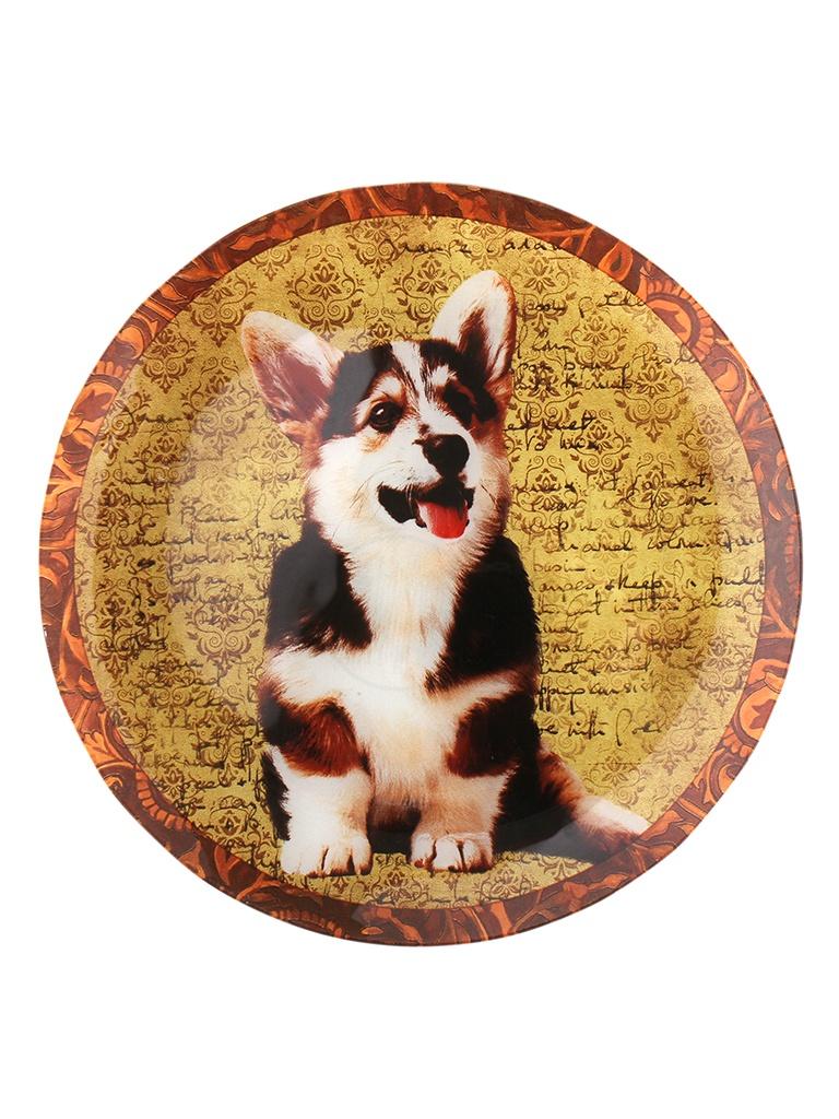 Блюдо Walmer Dogs 25cm W22232530