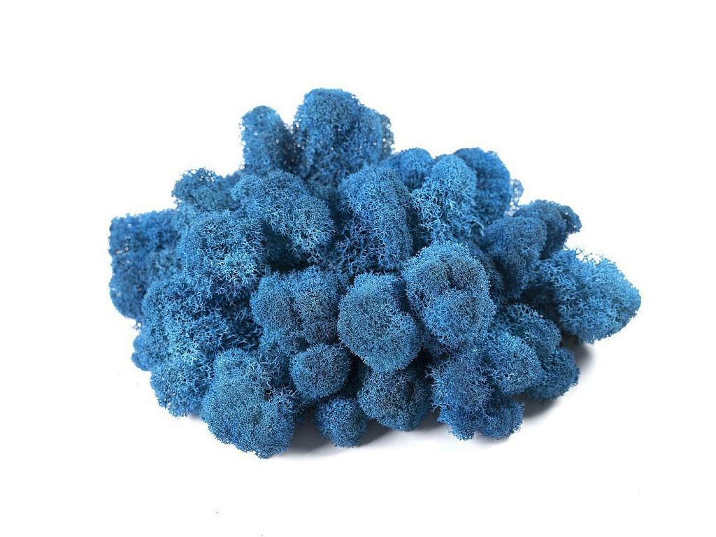 Растение Oktaur Мох Ягель 100g Blue MOSS-YAG-BLUE