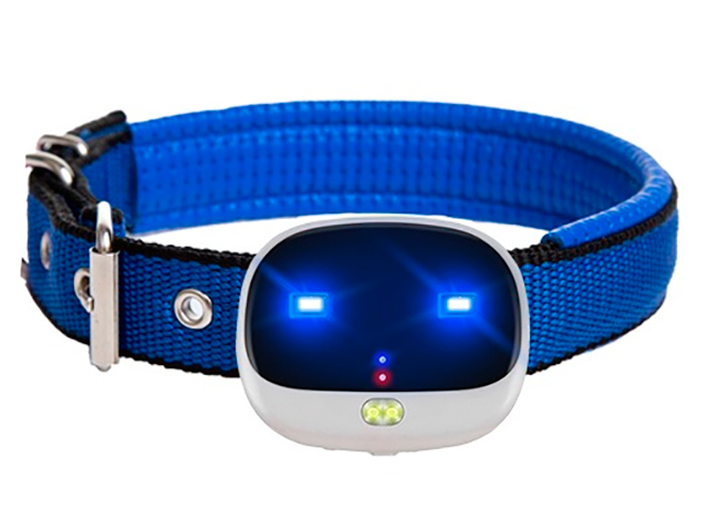 GPS-трекер ZDK Petsy EV10 PetV10
