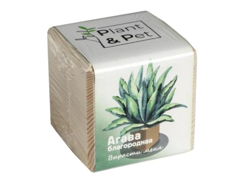 Растение Plant and Pet Агава Благородная PIPS-01-01