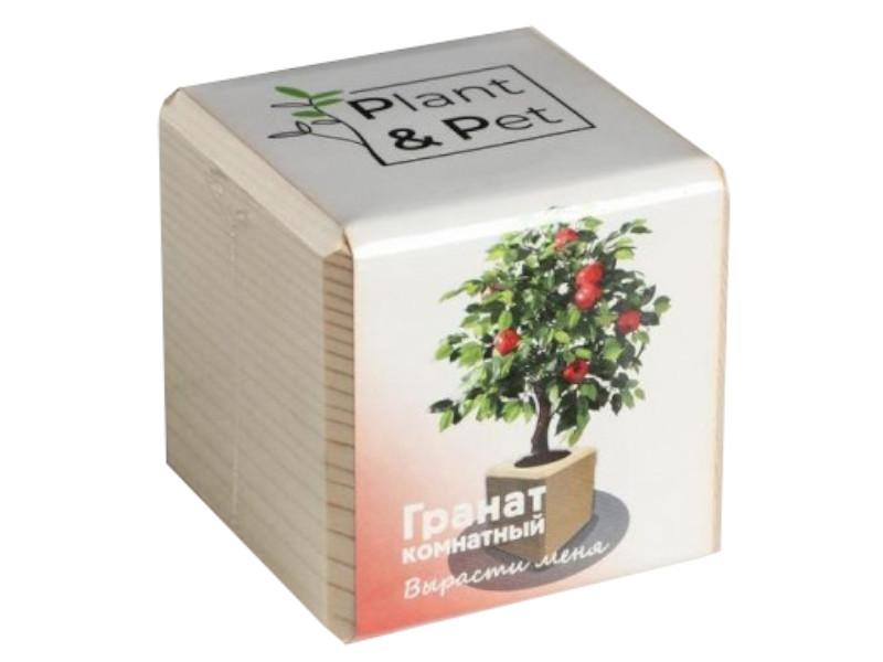 Растение Plant and Pet Гранат комнатный PIPS-10-01