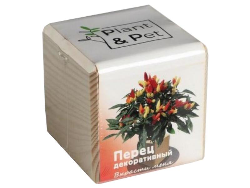 Растение Plant and Pet Перчик декоративный PIPS-13-01