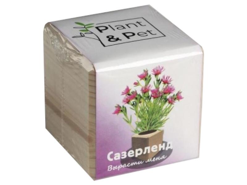 Растение Plant and Pet Сазерленд PIPS-03-01