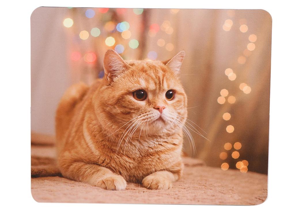 Коврик VS Cat VS_B4652