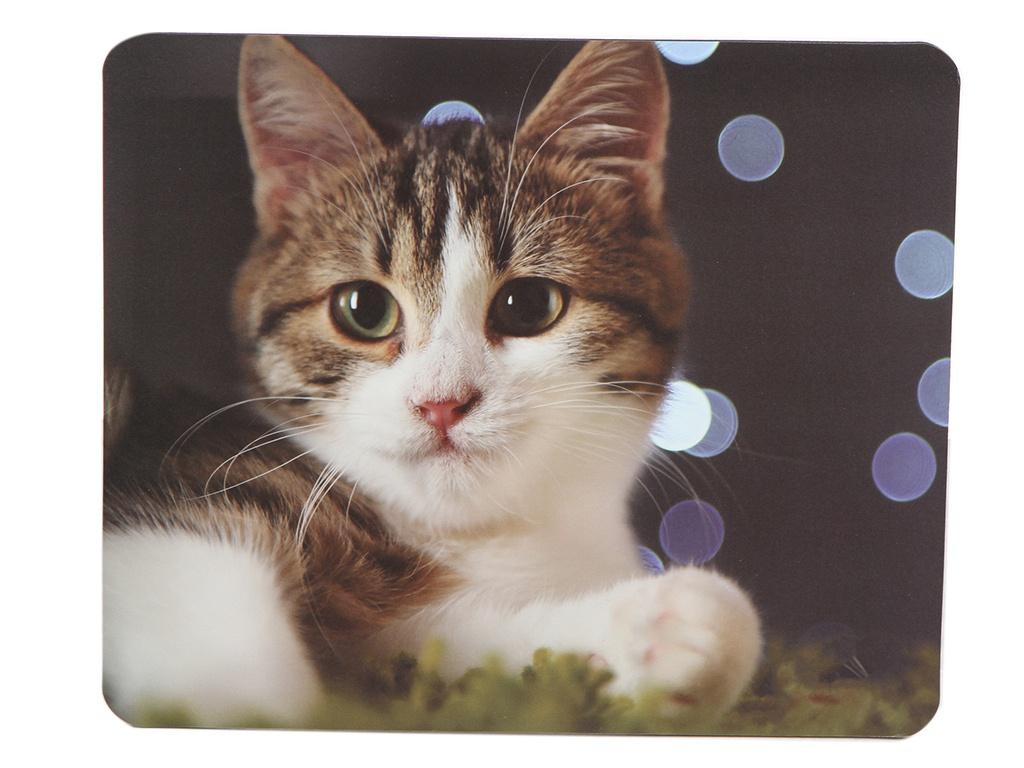 Коврик VS Cat VS_B4651