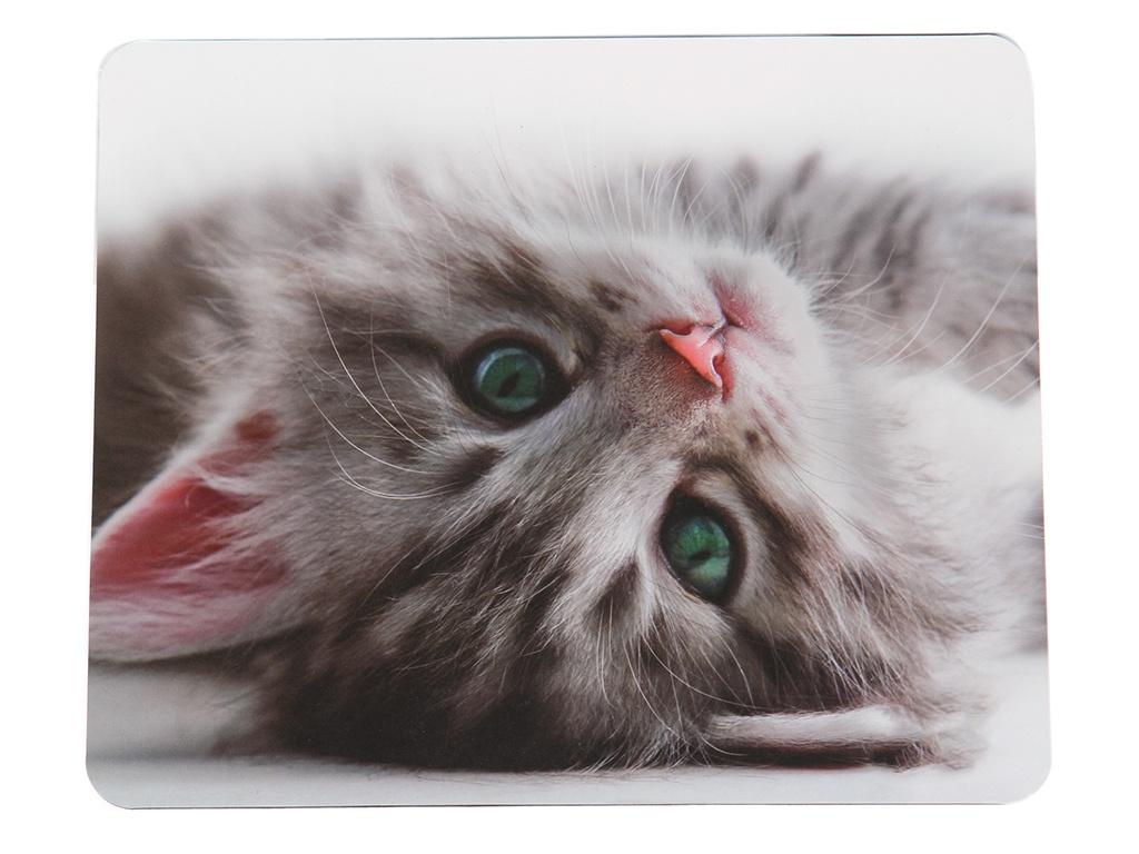 Коврик VS Cat VS_B4649