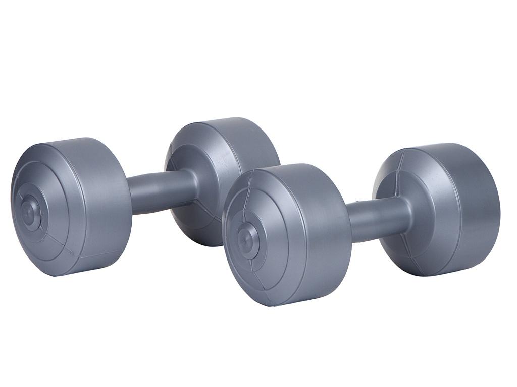 Гантели Euro Classic 4kg Silver 28273093