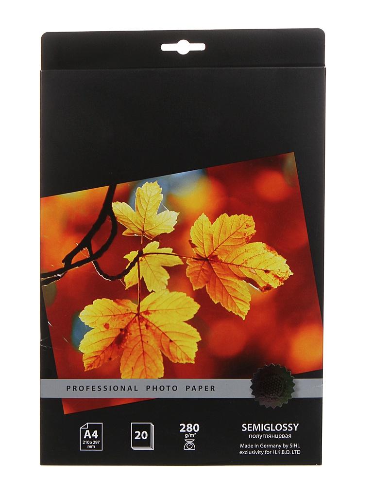 Фотобумага Cactus Prof A4 280g/m2 полуглянцевая 20 листов CS-SGA428020