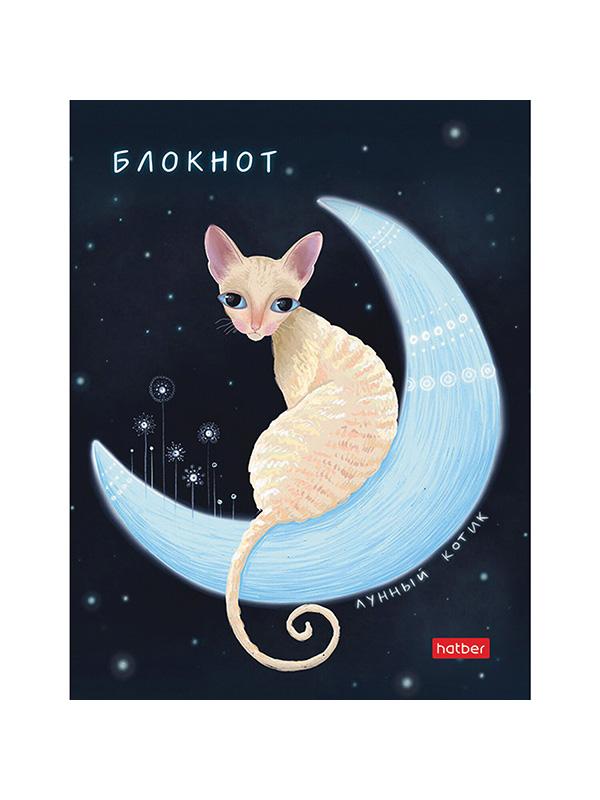 Блокнот Hatber Лунный кот А6 80 листов 80ББ6В1_23809