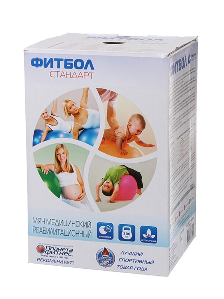 Фитбол Альпина Пласт Стандарт 55cm Light Blue 4020551043