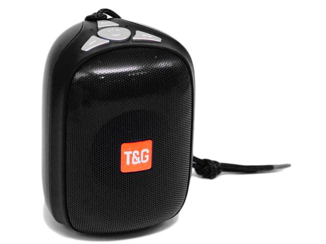 Колонка T&G TG-609 Black
