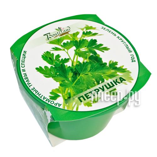 Растение BontiLand Зелень круглый год Петрушка 411807  Pleer.ru  258.000