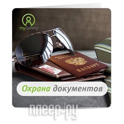 Пакет услуг СейфетиЛайн Безопасный документ  Pleer.ru  195.000
