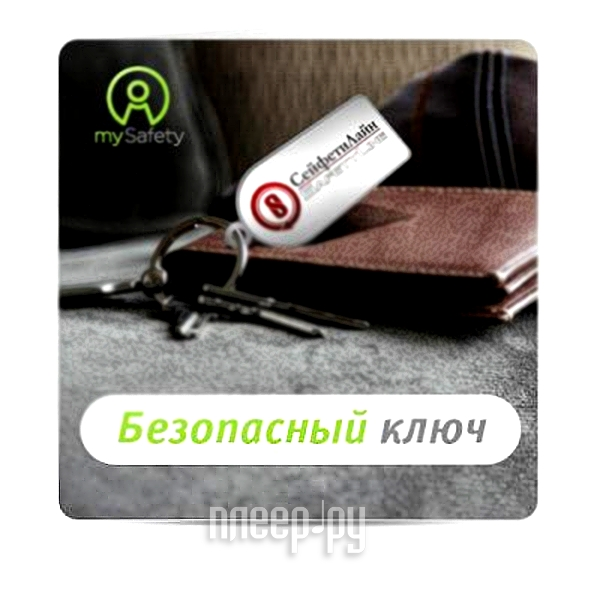 Пакет услуг СейфетиЛайн Безопасный ключ  Pleer.ru  195.000