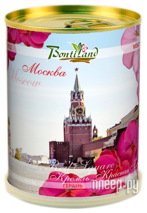 Растение BontiLand Герань 411296 Кремль  Pleer.ru  292.000