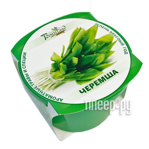 Растение BontiLand Зелень круглый год 411883 Черемша
