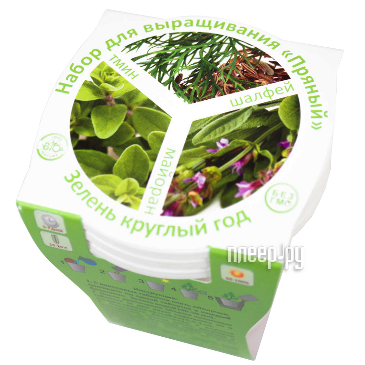 Растение BontiLand С Новым годом Ель 414617