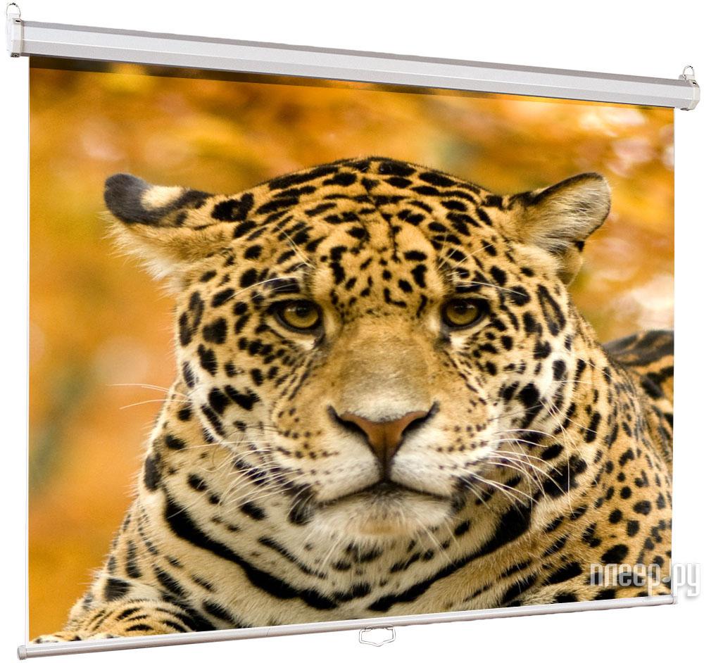 Экран Lumien Eco Picture LEP-100101 150x150cm  Pleer.ru  1257.000