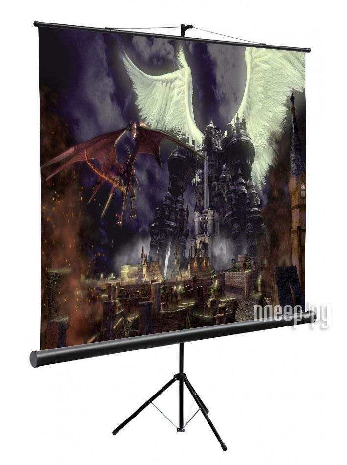 Экран Digis Kontur-C DSKC-1101 160x160cm  Pleer.ru  2064.000
