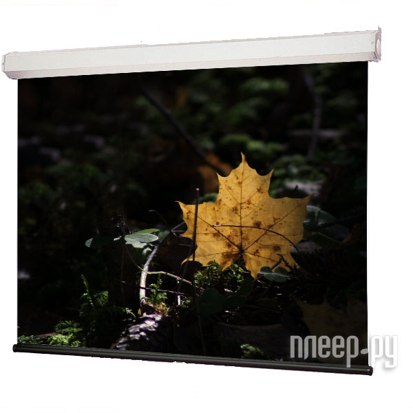 Экран Draper Luma HDTV 127x169cm 207008B настенный  Pleer.ru  3207.000
