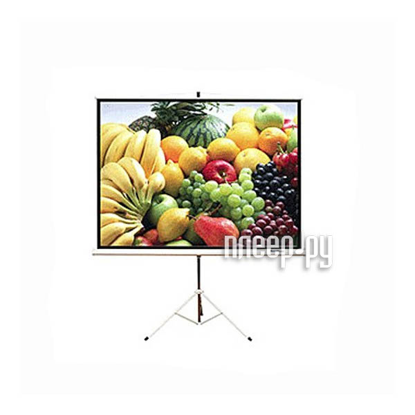 Экран ScreenMedia Apollo 127x127cm MW SAM-1101  Pleer.ru  2811.000