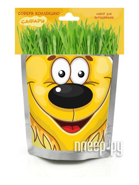 Растение Happy Plant Львенок hp-47  Pleer.ru  294.000