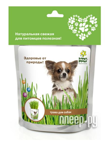 Растение Happy Plant Трава для собак hp-42