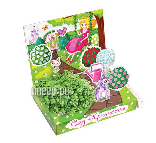 Растение Happy Plant Детский развивающий набор для выращивания Сад принцессы hps-214