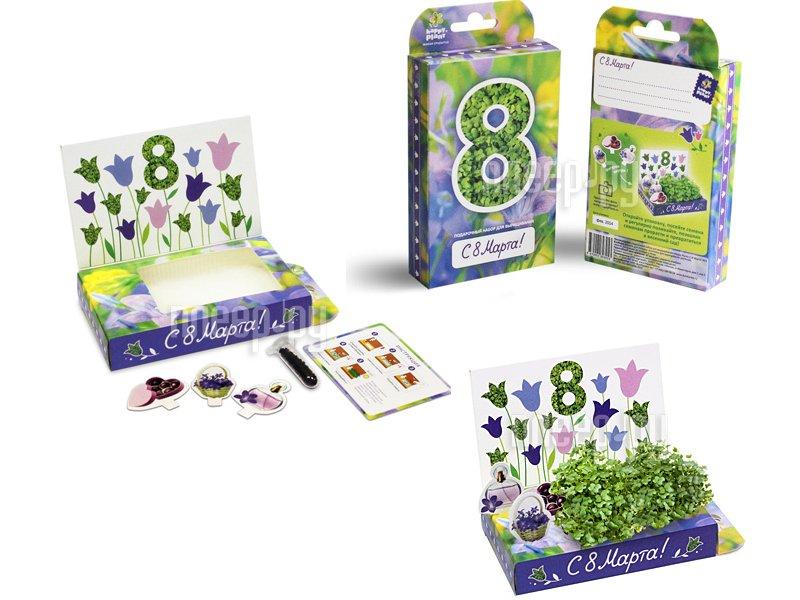 Растение Happy Plant 8 Марта Колокольчики hps-206