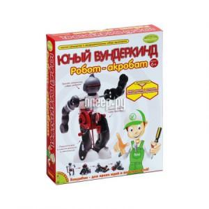 Купить Конструктор Bondibon Науки с Буки Робот-акробат BB0989