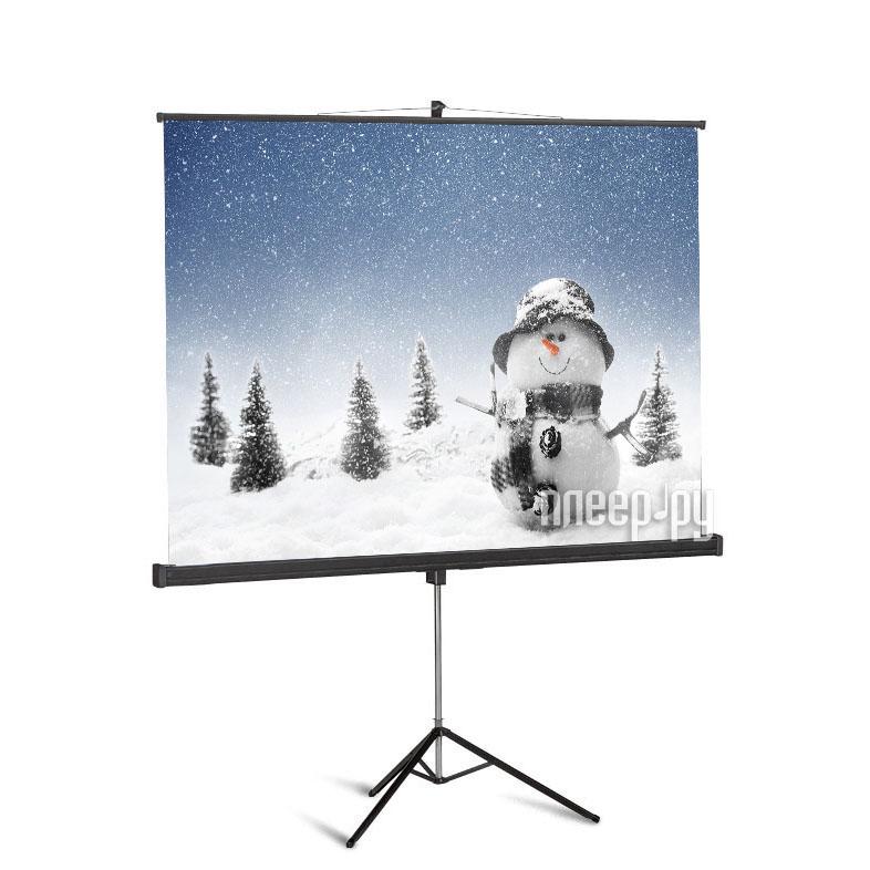 Экран Sakura Cinema Pro 266x150cm Motoscreen SCPSM-266x150FG