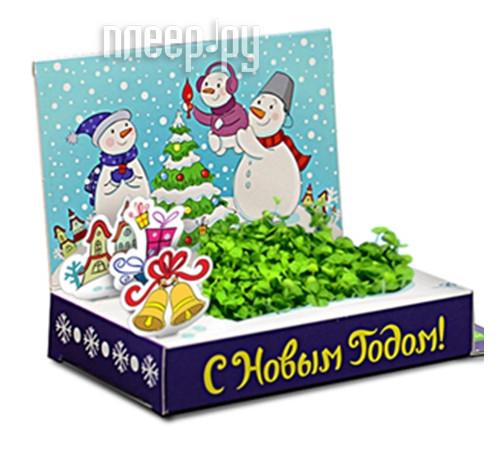 Растение Happy Plant Живая открытка Счастья в Новом году HPS-228