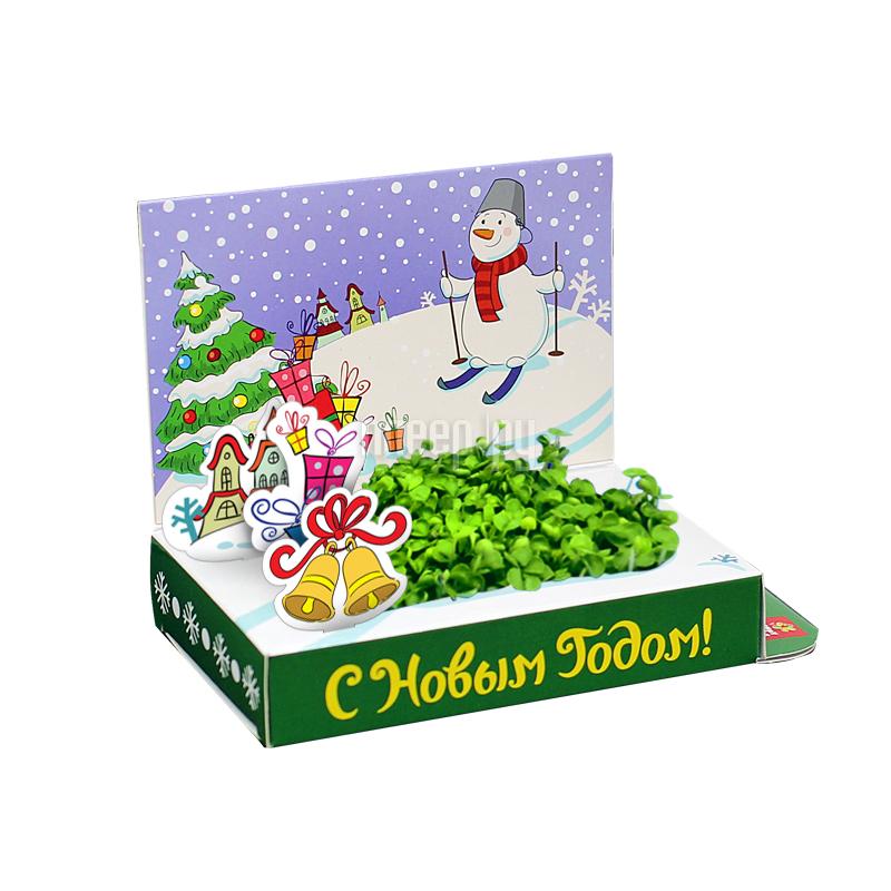 Растение Happy Plant Живая открытка Удачи в Новом году HPS-229