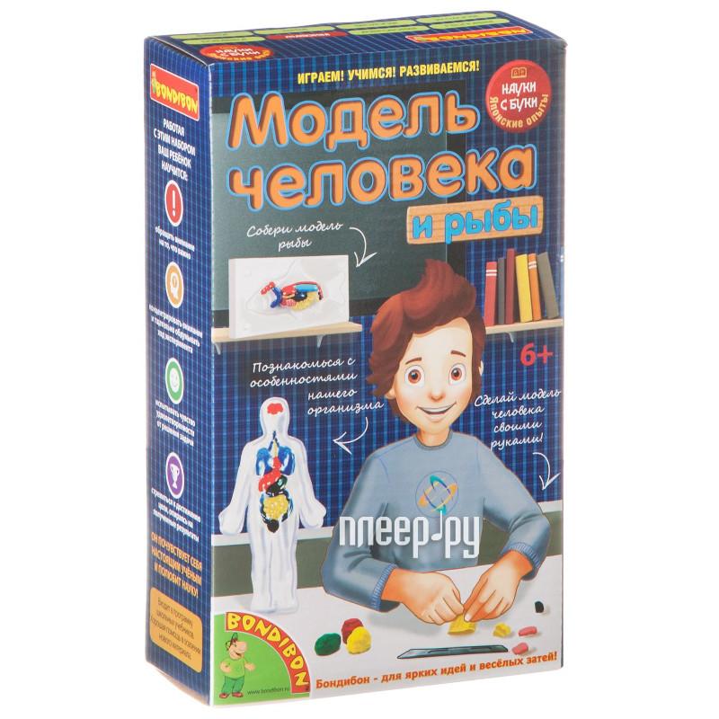 Игра Bondibon Науки с Буки Модель