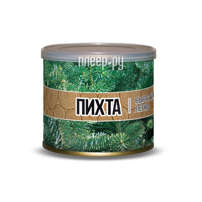 Растение BontiLand Пихта 411227