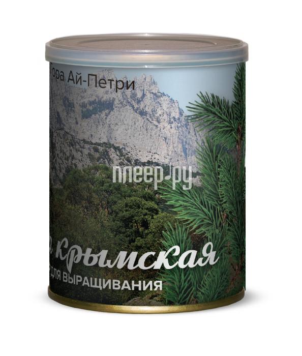 Растение BontiLand Гора Ай-Петри, Сосна Крымская 415010