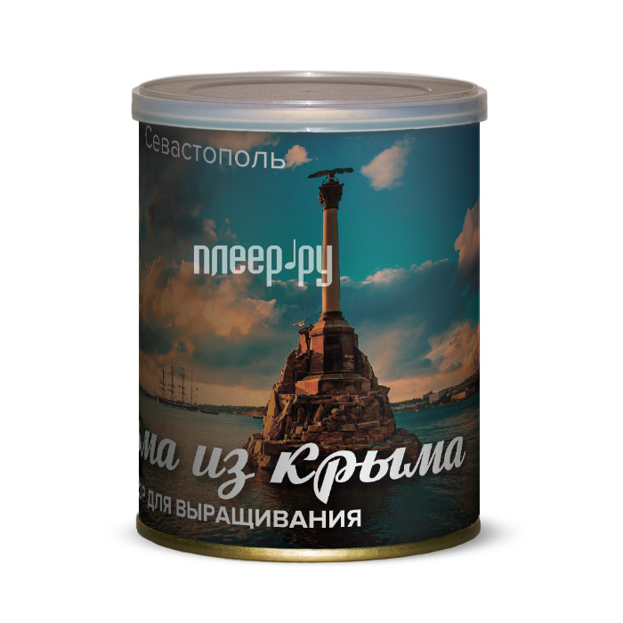 Растение BontiLand Севастополь, пальма из Крыма 415041 купить