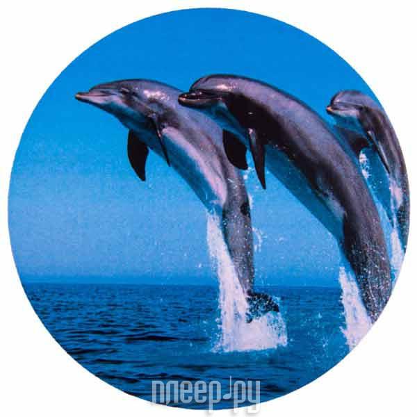 Аксессуар Skyway Дельфины R15 S06301011 за 742 рублей
