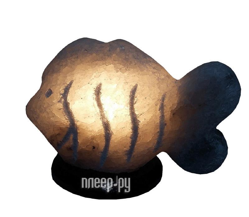 Солевая лампа СИМА-ЛЕНД Ракушка 2-3кг 1533531