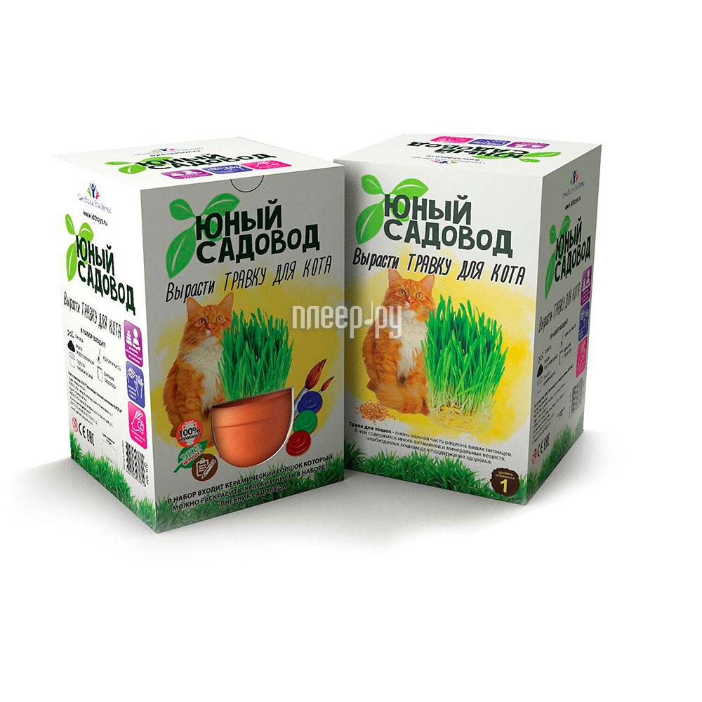 Растение Висма Юный садовод, Вырасти травку для кота 404