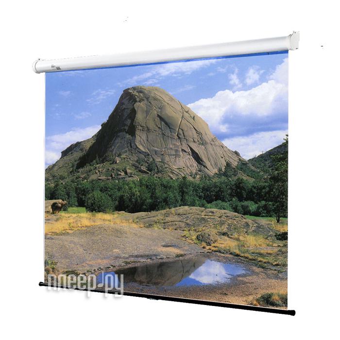 Экран Draper Luma NTSC 305x120 16000489 купить