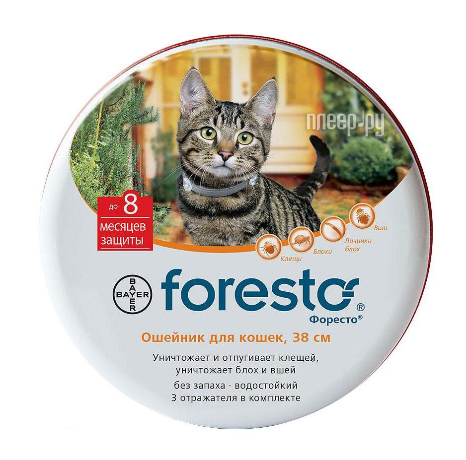 Витамины Bayer Foresto ошейник для кошек 01.04.19 84865893